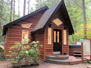#16 Pet Friendly Cabin with WiFi and a Hot Tub!, Glacier