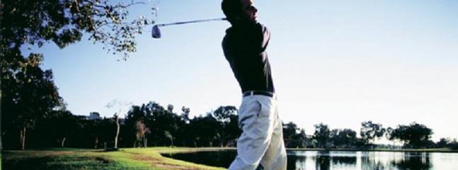 12 golf courses in the area