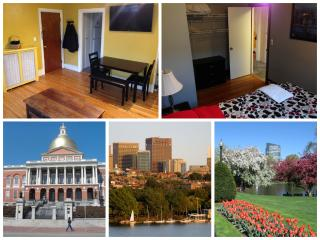 2BR Historic Boston (Beacon Hill) PENTHOUSE W/Deck