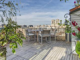 Notre Dame Paris Flat Penthouse with 30m2 Terrace, Parijs