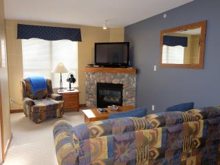Snowy Pines - Fabulous 2 bedroom condo right on the hill. Pet Friendly!