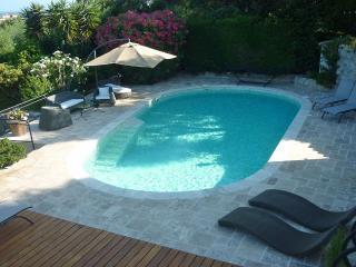 Villa Near Cannes with a Private Pool - Villa Cannes