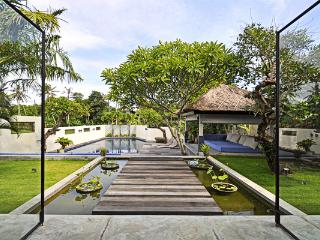 Gorgeous villa with unique design, Kerobokan
