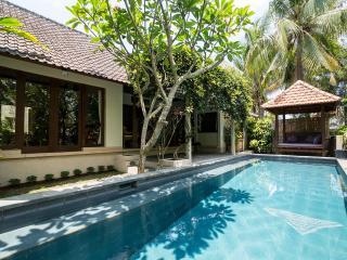 Private Villa Nyoman Bisma, Ubud