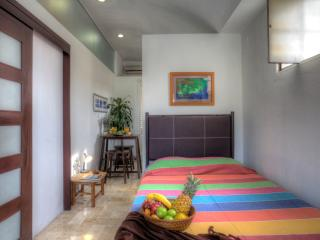 STUDIO OLD VALLARTA CONDO DE COLORES VERDE