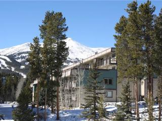 Economically Priced In Town 2 Bedroom Condo - Ski and Racquet B102, Breckenridge