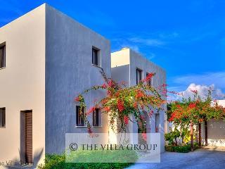 Great House in Kissonerga (Villa 3049)