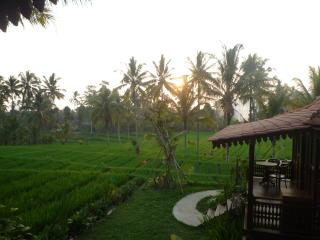 Neyang invite you to stay with Peace of Mind, Kedewatan
