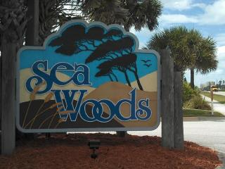 GRACIOUS LIVING IN SEAWOODS, New Smyrna Beach