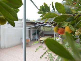 Trilocale con giardino,2 km da Alghero