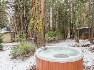 Creekside Chalet with Hot Tub in Carnelian Bay