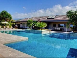 Ahina Palauna Estate- Sleeps 20! Minutes from ocean! Private pool!