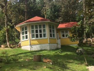 Estilo cabina de país canadiense, San Cristóbal de las Casas