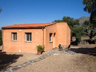 Finca el Rabilargo, bungalow la Encina, Arroyomolinos