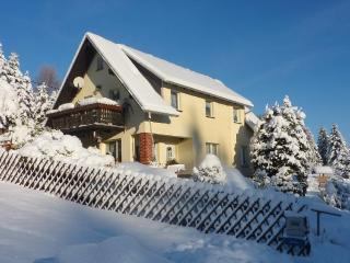 Vacation Apartment in Bad Elster - 377 sqft, quiet, clean, relaxing (# 1274)