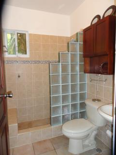 En-suite bath to bedroom-glass block shower