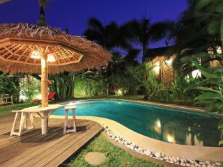 Beautiful peaceful cozy big Villa, pool table, center Seminyak.
