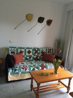 Salon muy luminoso con sofá cama y TV Lcd de 48 pulgadas