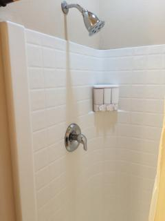 Full Guest Bathroom - Shower