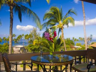 Ocean View 2BR, Beach Access, WIFI Phone CAN USA, Kihei