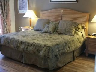 Orlando/Kissimmee Lake Berkley 5 bed luxury villa.