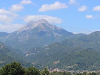 1 BR in Tuscan villa. Views/Pool 10m walk to Barga