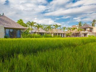 Villa Lumia - View from the Rice Fields
