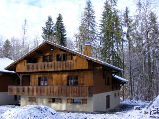 Luxury  Alpine Chalet with Hot Tub, Morillon