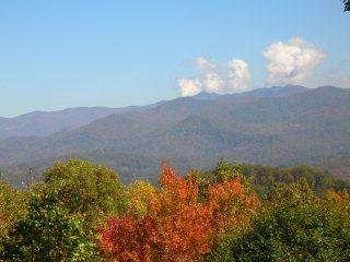 Looking from deck into Smoky Mountain National Park.