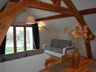 Ecological flat Paris Disneyland for 2 to 6 people, Lagny-sur-Marne