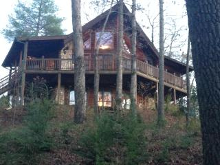 Private, Charming, Ellijay Cabin on 24 Acres
