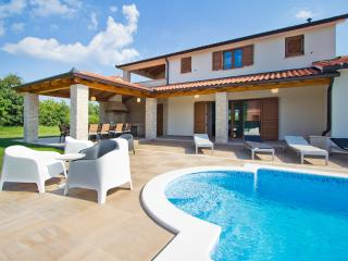 Villa with swimming pool, Nedescina