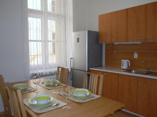 2 bedrooms, a GROUP RATE downtown, Prague