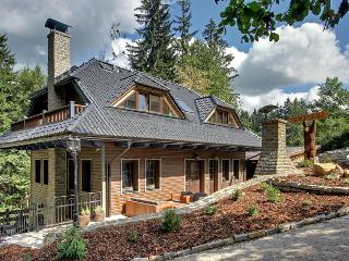 Luxury cottage with own wellness