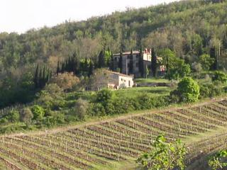 Bed & Breakfast La Cerreta, Gaiole in Chianti