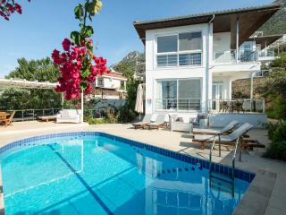 V.Leo (FREE CAR OR TRANSFERS), Kalkan