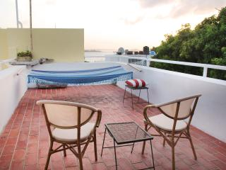 Classic Penthouse in Old San Juan