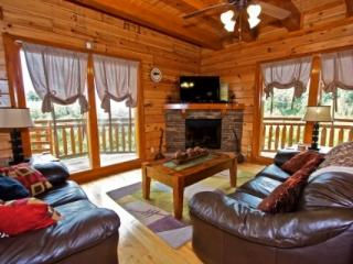 Best Little Pool House in the Smokies, Sevierville