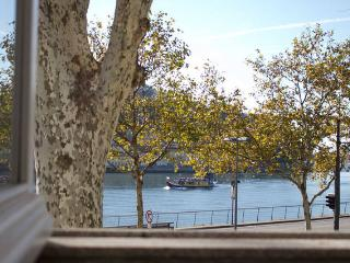 Douro Riverfront view with touristic rabelo boat from the kitchen window