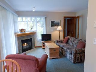 Sunpath 46 1 bdrm, pet-friendly condo in Whistler