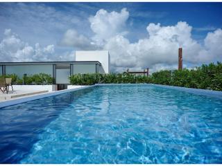 Infinito Penthouse 201 ~ RA61744, Playa del Carmen