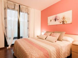 Apartament Rei Martí, Girona
