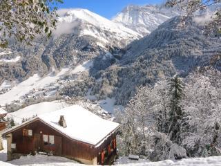 Splendid chalet near Mont Blanc, Saint-Nicolas-de-Veroce
