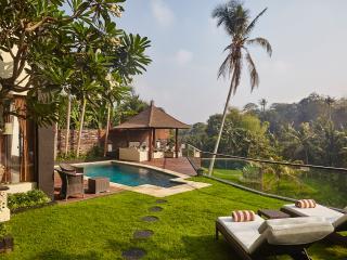Mandalay Hideaway: stunning Villa, spectacular setting in the heart of real Bali