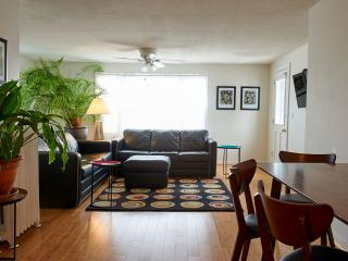 Modern Apartment Rentals in the Heart Of Viroqua