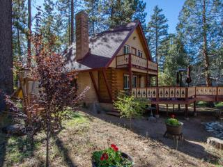 Lodge on San Jacinto, A/C, Hot Tub and Dog Friendly!