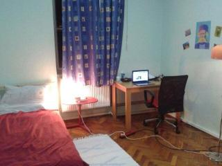 Room for rent in Zagreb Center (3 months+)