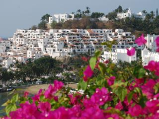 Have it All: Ocean View, Beach and Pool!, Manzanillo