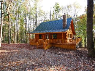 Fireside Cabin, Rockbridge