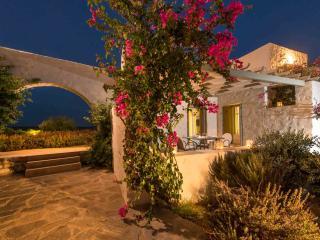 Stagones Premier Pool Front Villa